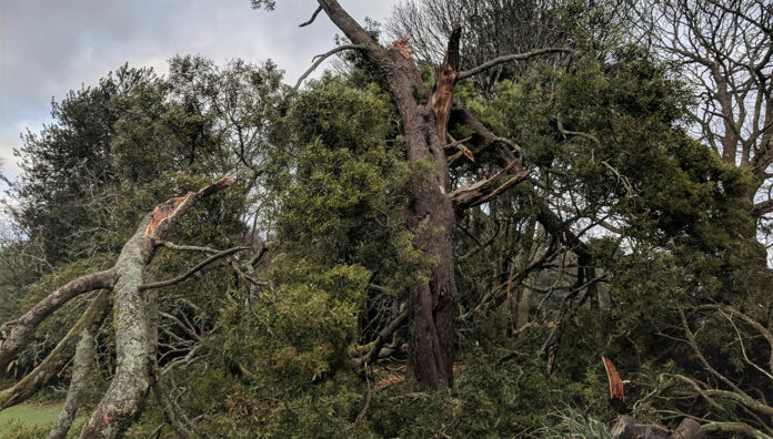 Thousands of residents continue to be left without electricity or running water after a Victorian storm.
